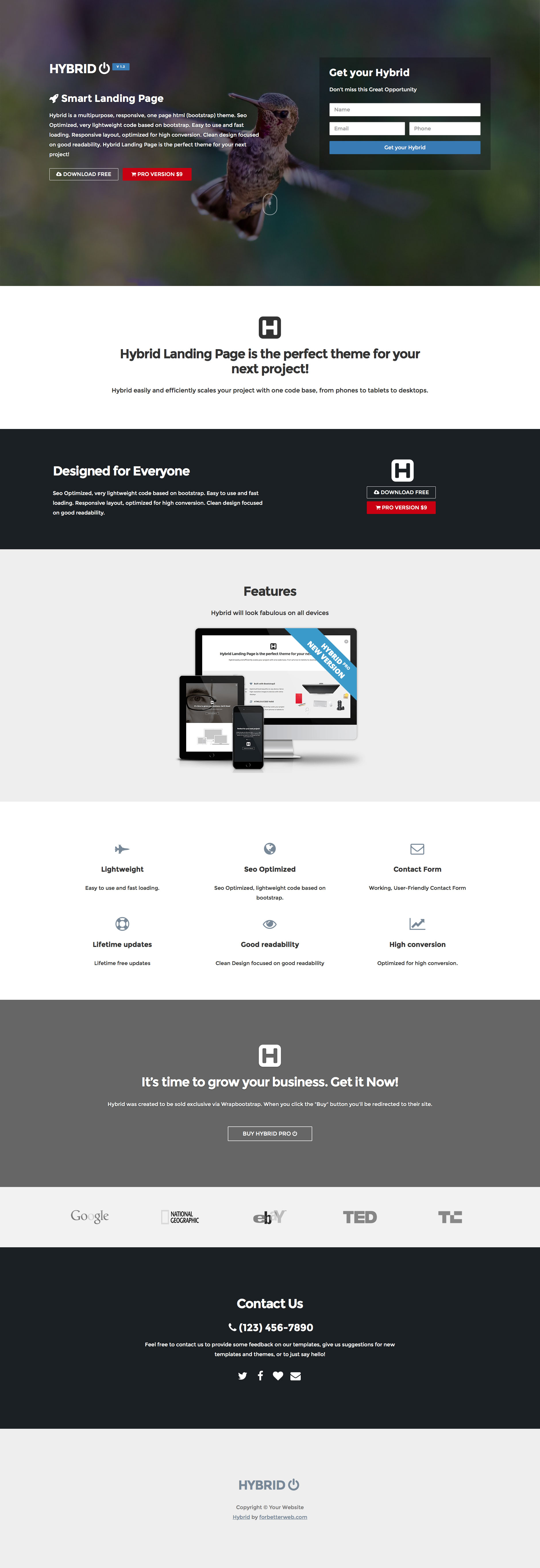 Hybrid Free responsive HTML5 Bootstrap template - HTMLTEMPLATES.CO