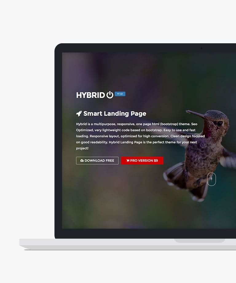 Hybrid Free responsive HTML5 Bootstrap template