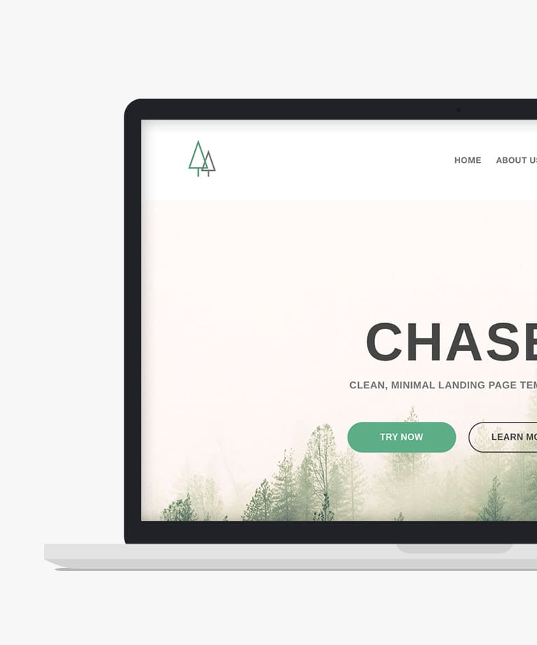 Chase Free responsive HTML5 Landing page template