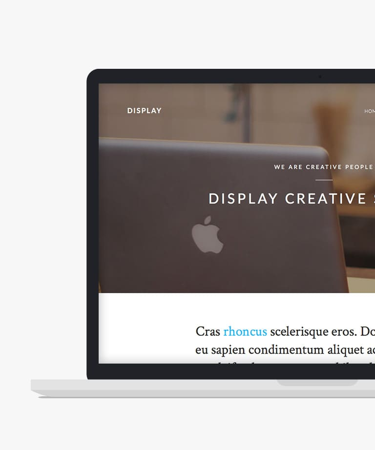 Display Free responsive HTML5 Bootstrap Business template