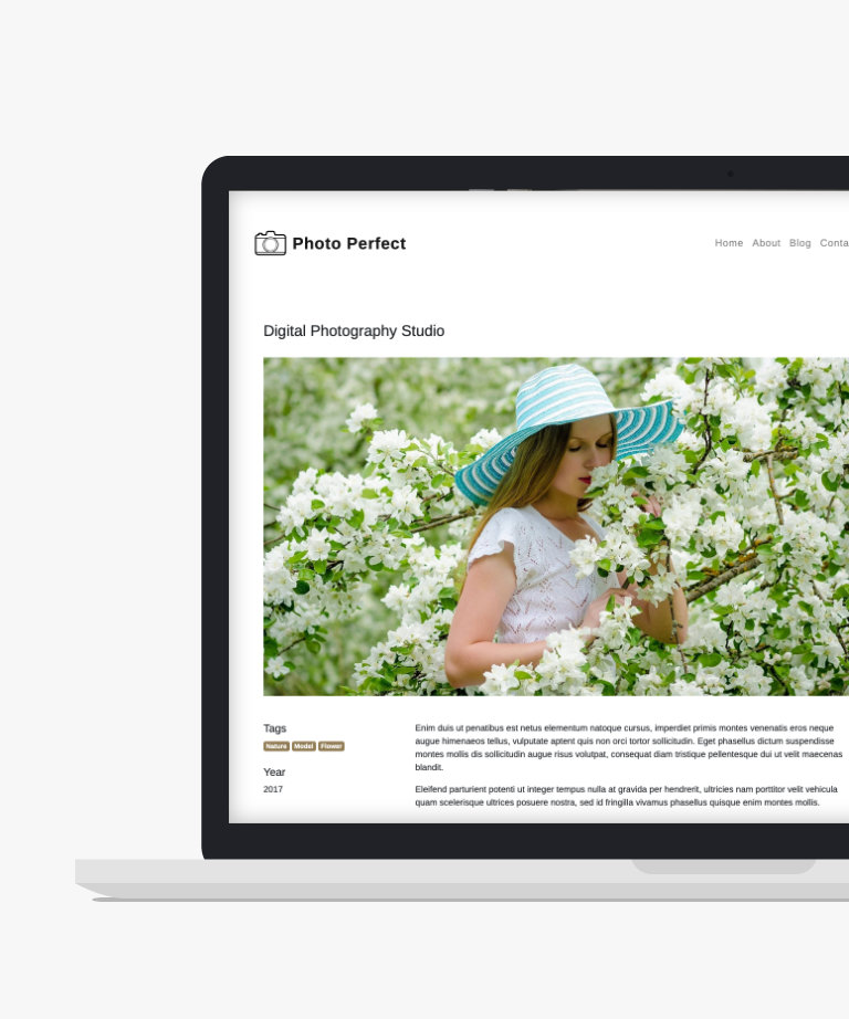 Photo Perfect Free responsive HTML5 Bootstrap Photography template